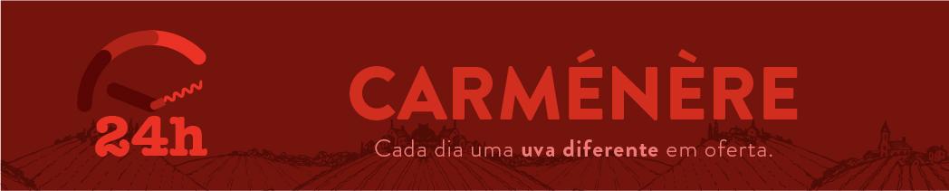 24h de Carmenere